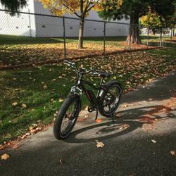 Sunny Day Bike Ride