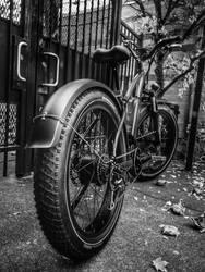 Rad Rebel @ The Gate