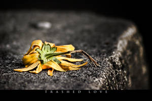 Trashed Love by UrbanRural-Photo