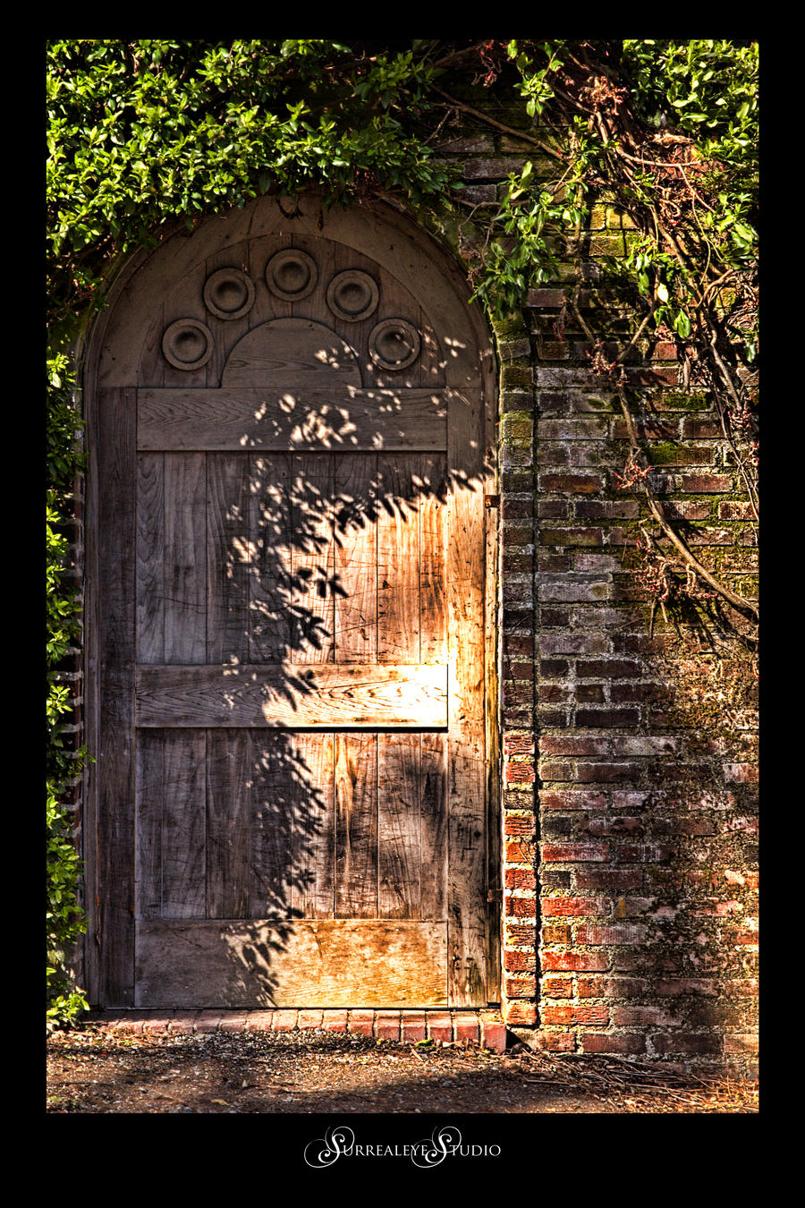 Garden Door by UrbanRural-Photo