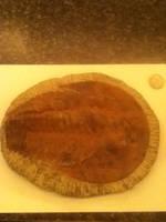 Trilobite Fossil by RexFan684