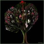 Apo-Butterfly Tree