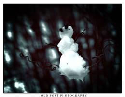 Winter Watchman