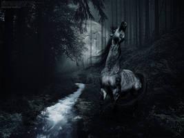 Dark Arabian by oldpost