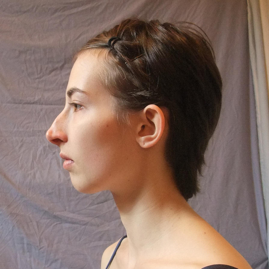 Face side view - hair pinned by CuriousPeaches on DeviantArt