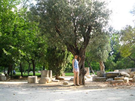 Jardines del Turia 1