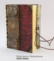 notebook moleskine IV by Diarment