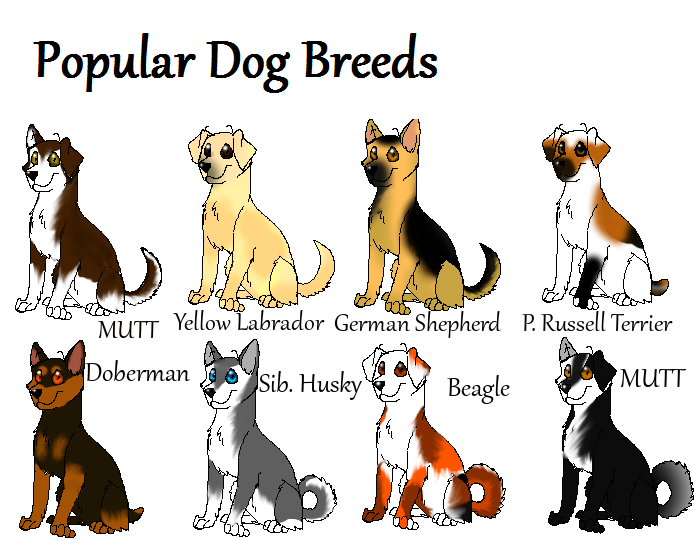 All Types Of Dogs Images With Names