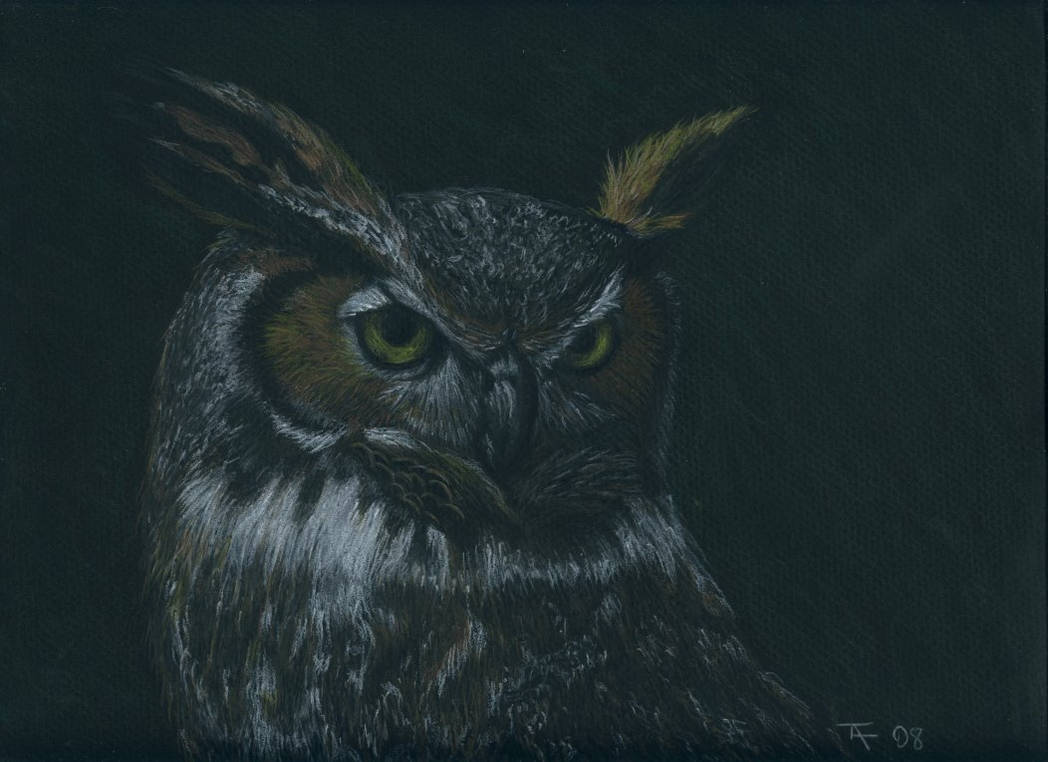 Cristian's Owl - Final - SOLD