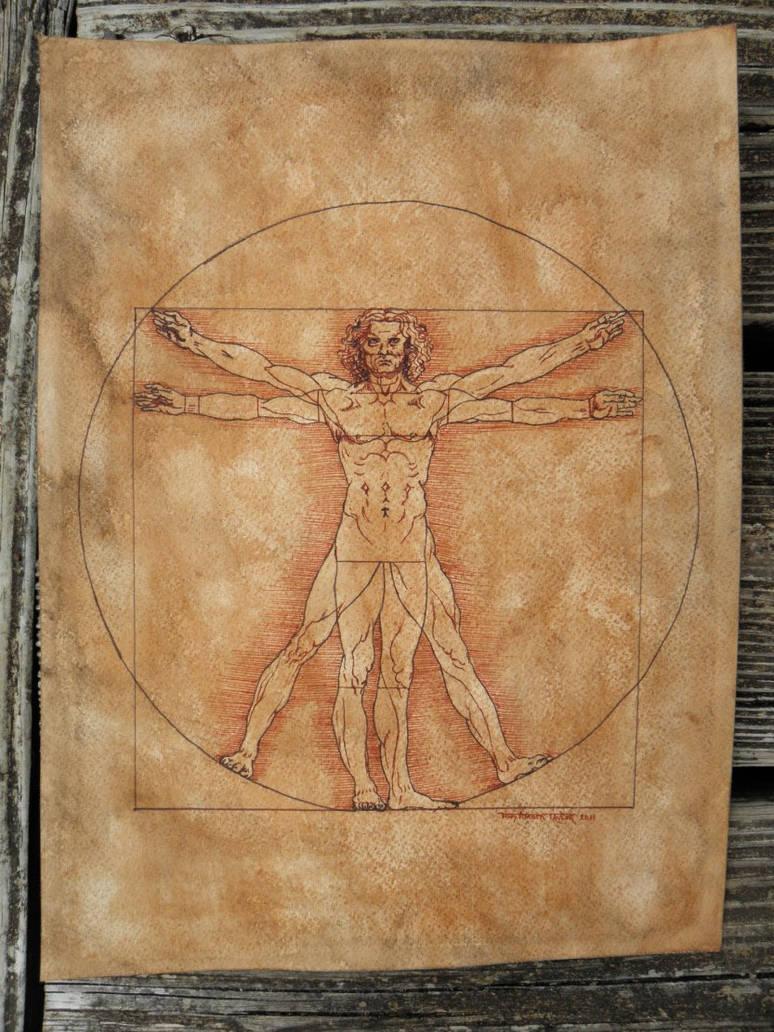 Vitruvian Man Study - Commission