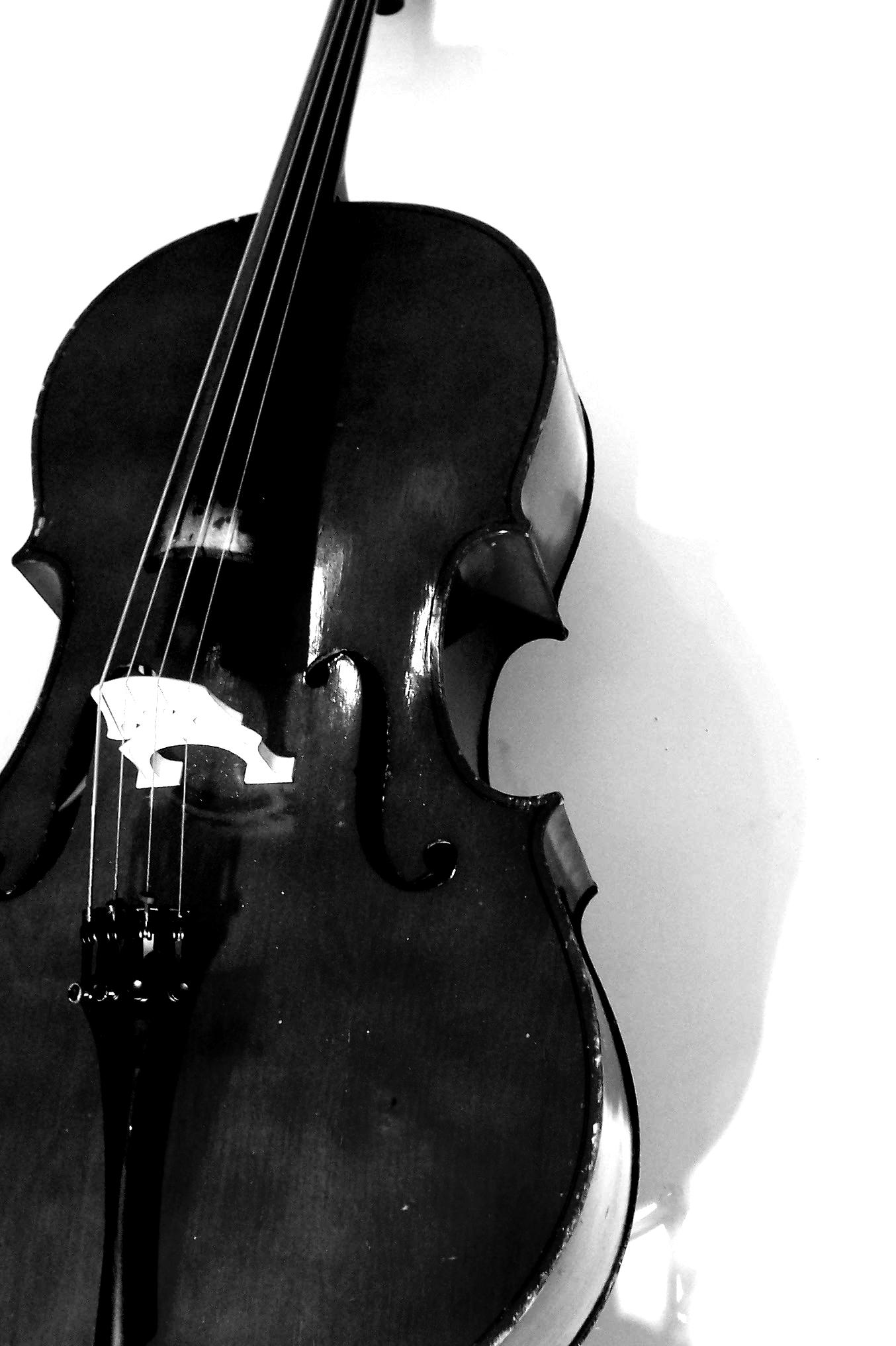 portrait of cello by suggestivetomatoes on deviantart