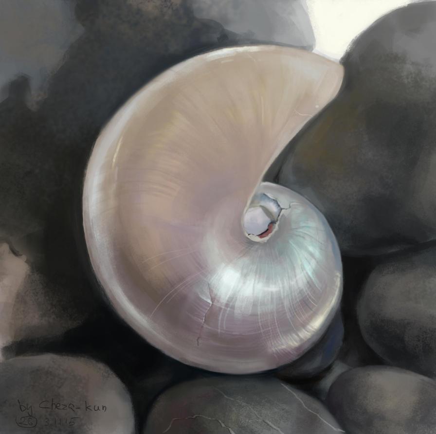 Shell by Cheza-Kun