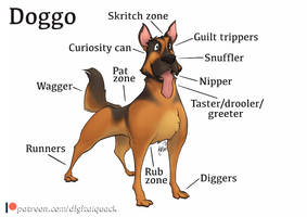 Beasty Bits no. 8 - Doggo