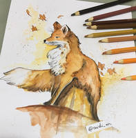 Raposa (aquarela) by arielim