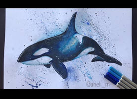 Orca by arielim