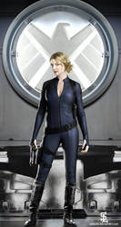 Emily VanCamp as Agent Carter