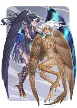 Commission: Harpies