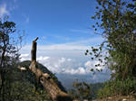 Mt. Cikuray
