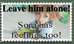 Leave Sora Alone by GoggleMaster01