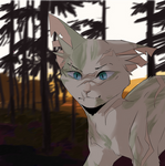 Ivypool by star-collector86