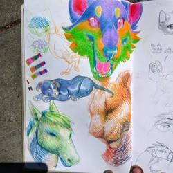 Doodle bop by Weird-Honey