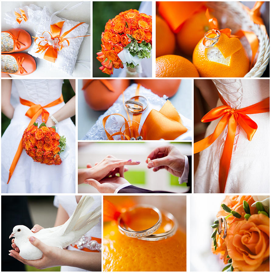 Orange wedding collage by aleksie on deviantart orange wedding collage by aleksie junglespirit Gallery