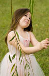 Fairie 2