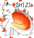 Changed Game|ShiZi
