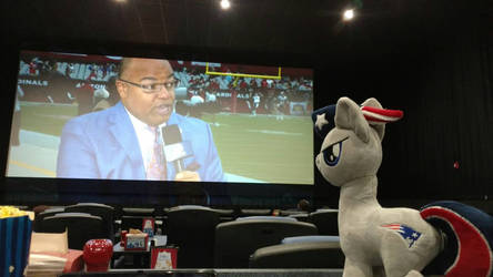 Patriot Pony watching the game