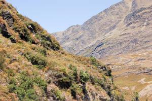 NZ Mountain side ledge by Chunga-Stock