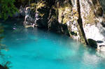 NZ Deep pool mossy edges