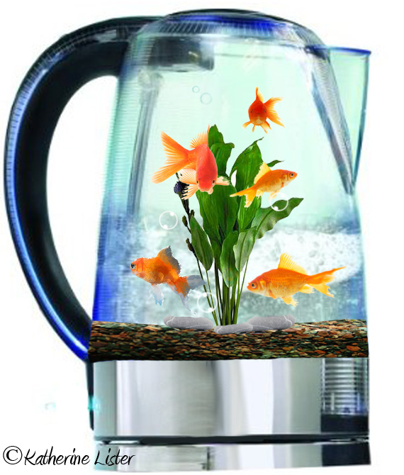 Different kettle of fish by pskate1 on deviantart for Kettle of fish