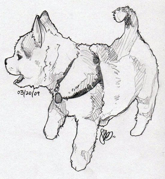 - Siberian Husky Puppies Coloring Pages