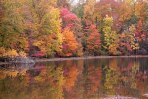 Lakeside Splendor by desmo100