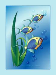 Queen Trigger Fish by desmo100