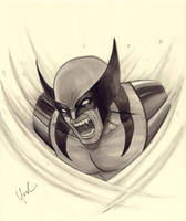 Wolverine Marker Sketch by Protokitty