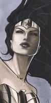 Wonder Woman Mini Portrait