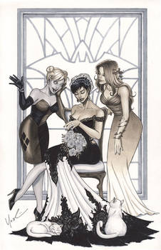 Catwoman's Wedding Day