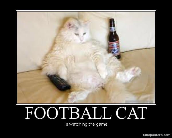 Dave the Cat Watching Hockey