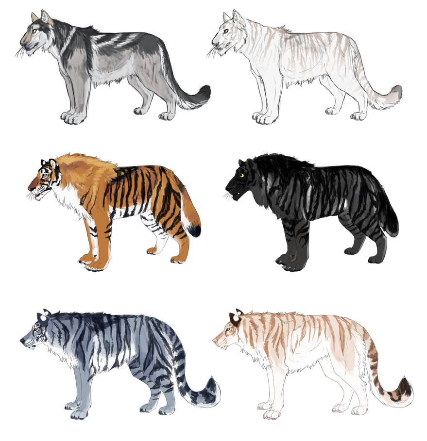 Tiger Wolf Hybrid Adopts [OPEN] by JatoWhitz on DeviantArt - photo#30