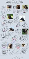 Quick Dog Jowls Study that's semi-helpful by JatoWhitz