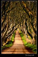 The Long walk by Dean-Irvine
