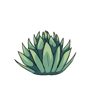 Agave by ReapersSpeciesHub