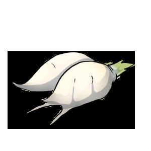 Prarie Turnip by ReapersSpeciesHub