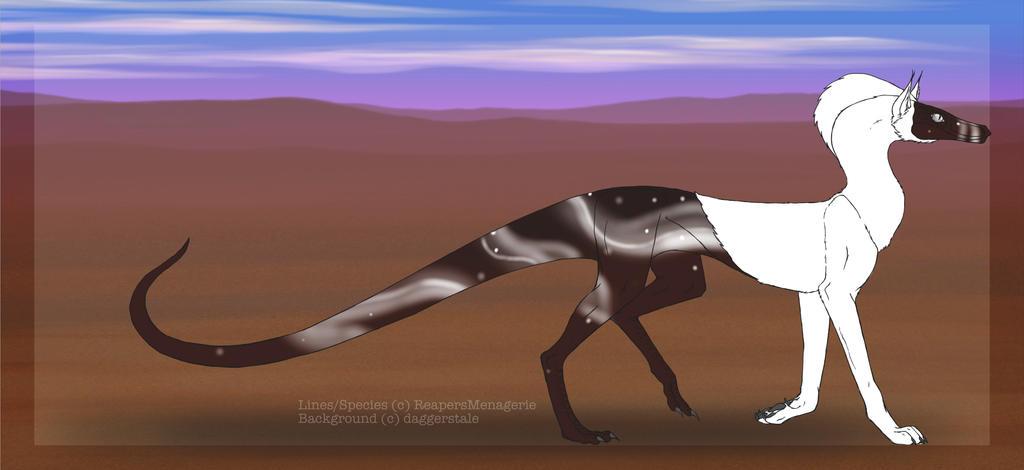 Kotege (#501) by ReapersSpeciesHub