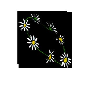 Daisy Chain by ReapersSpeciesHub