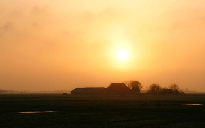 Good Morning Holland by Dynnnad