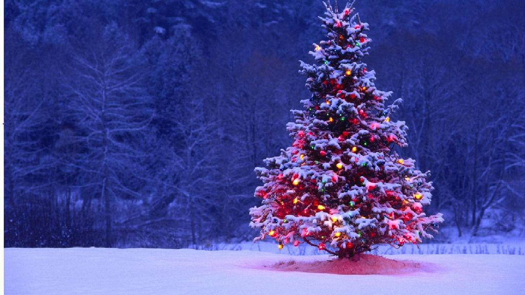 Скачать Обои Новогодняя Елка