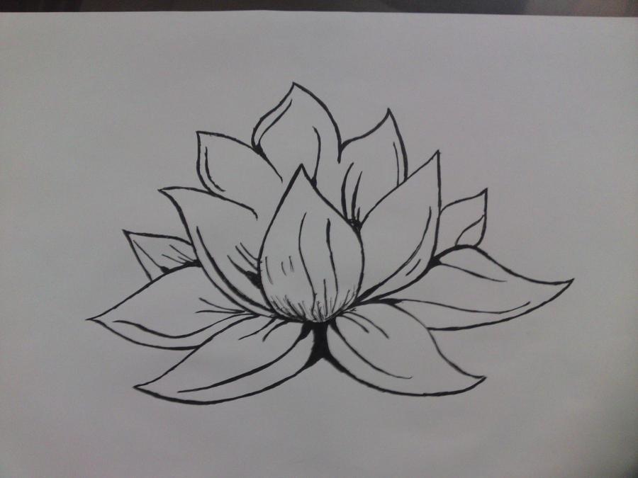 Flor De Loto Dibujos. Fabulous Flor De Loto Dibujo Buscar