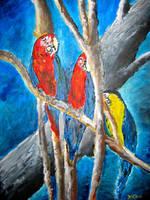 parrot oil painting art print by derekmccrea